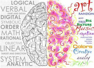 Kairioji ir dešinioji smegenų pusės.